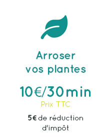 services_arroserplante_L4